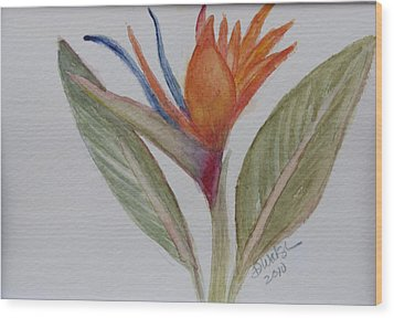 Wood Print featuring the painting Bird Of Paradise by Donna Walsh