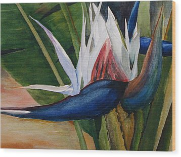 Bird Of Paradise Wood Print by Dwight Williams