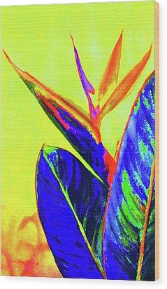 Bird Of Paradise Wood Print by Estela Robles