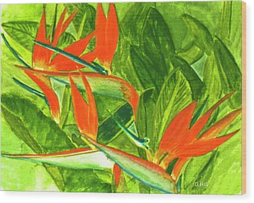Bird Of Paradise Flower #55 Wood Print by Donald k Hall