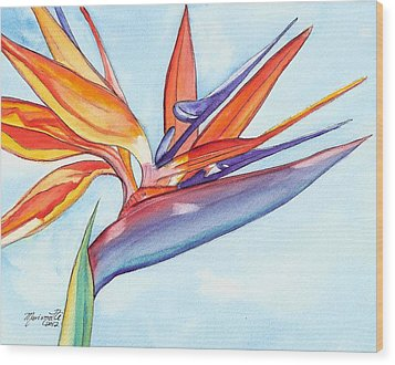 Bird Of Paradise IIi Wood Print by Marionette Taboniar