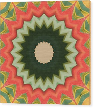 Bird Of Paradise Kaleidoscope Wood Print by Bill Barber