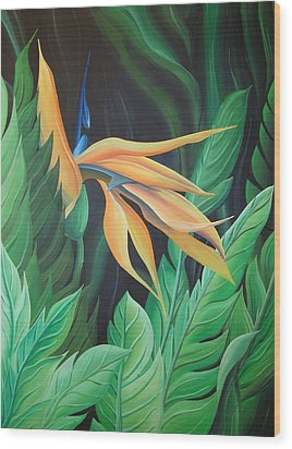 Bird Of Paradise Wood Print by William Love