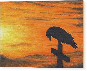 Bird Of Pray Wood Print by Don McMahon