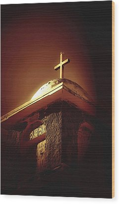 Bird On A Steeple Wood Print