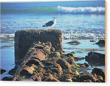Bird On Perch At Beach Wood Print