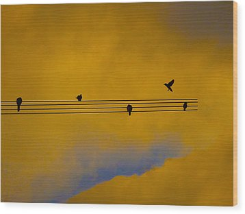 Bird Song Wood Print