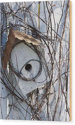 Birdhouse Brambles Wood Print by Lauri Novak