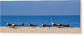 Birdline Wood Print