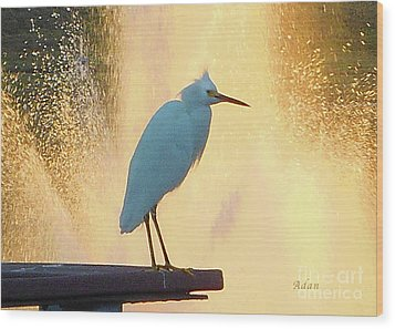 Birds And Fun At Butler Park Austin - Birds 3 Detail Macro Wood Print by Felipe Adan Lerma