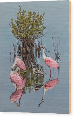 Birds And Mangrove Bush Wood Print