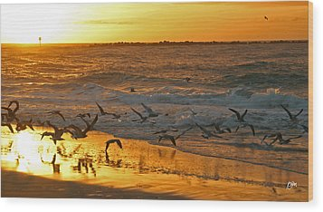 Wood Print featuring the photograph Birds At Sunrise by Phil Mancuso
