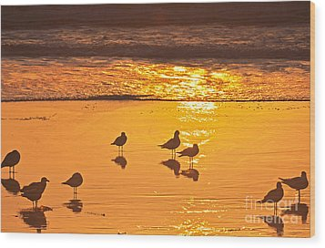 Birds At Sunset Wood Print by Loriannah Hespe