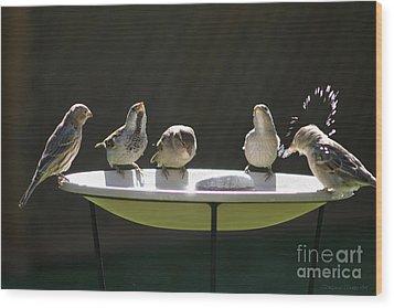 Birds Drinking From Bird Bath In Summer Sunshine Wood Print by Gordon Wood
