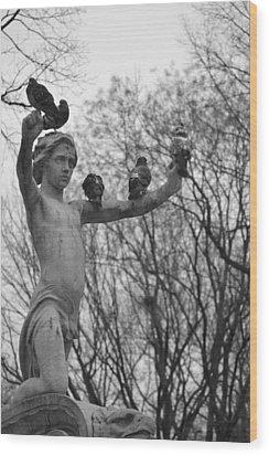 Birds Eye View- Central Park Wood Print by Tara Miller