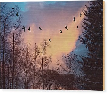 Wood Print featuring the photograph Birds Fly by Vladimir Kholostykh