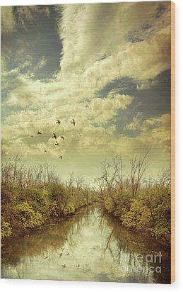 Wood Print featuring the photograph Birds Flying Over A River by Jill Battaglia