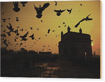 Birds In Flight At Gateway Of India Wood Print by Photograph by Jayati Saha