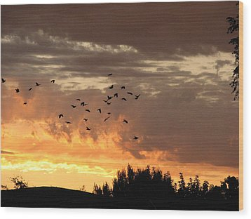 Birds In The Sky Wood Print by Kathy Roncarati