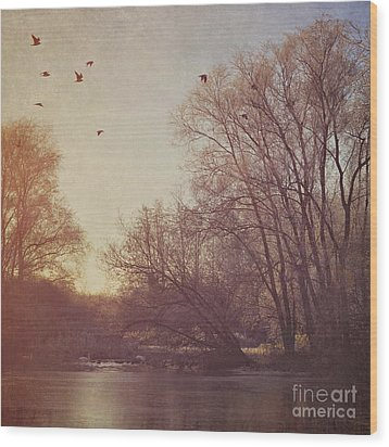 Wood Print featuring the photograph Birds Take Flight Over Lake On A Winters Morning by Lyn Randle