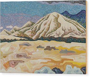 Birdseye Landscape #5 Wood Print by Dale Beckman