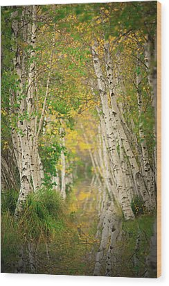 Wood Print featuring the photograph Birtch Row  by Emmanuel Panagiotakis