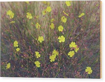 Wood Print featuring the photograph Bisbee Peak Rushrose by Alexander Kunz