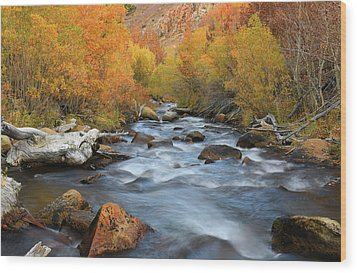 Wood Print featuring the photograph Bishop Creek Fall Season by Dung Ma
