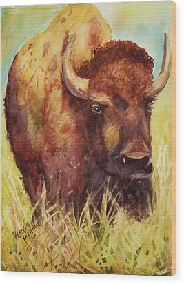 Bison Or Buffalo Wood Print by Patricia Pushaw