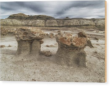Wood Print featuring the photograph Bisti Mushrooms by Alan Toepfer