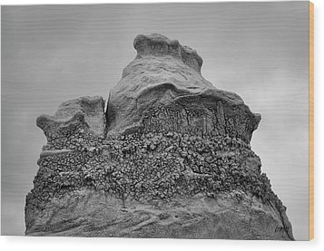 Bisti V Bw Wood Print by David Gordon