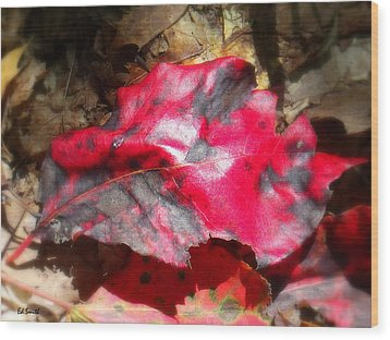 Black And Red Wood Print by Ed Smith