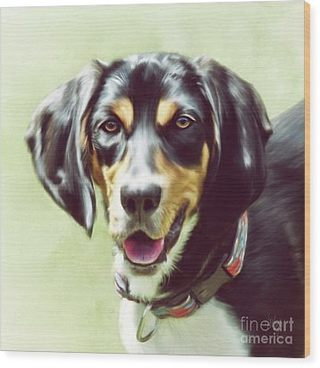 Wood Print featuring the digital art Black And Tan by Lois Bryan