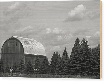 Black And White Barn Wood Print