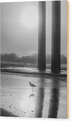 Wood Print featuring the photograph Black And White Bird Beach by John McGraw