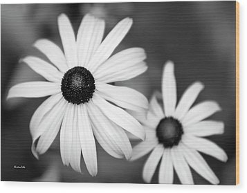 Wood Print featuring the photograph Black And White Daisy by Christina Rollo