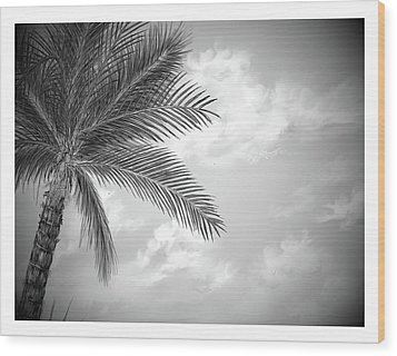 Wood Print featuring the digital art Black And White Palm by Darren Cannell