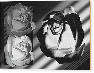 Black And White Roses Wood Print by Phyllis Denton