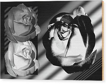 Black And White Roses Wood Print