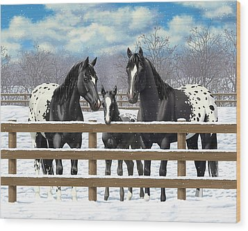 Black Appaloosa Horses In Snow Wood Print by Crista Forest