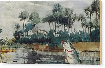 Wood Print featuring the painting Black Bass Florida by Pg Reproductions