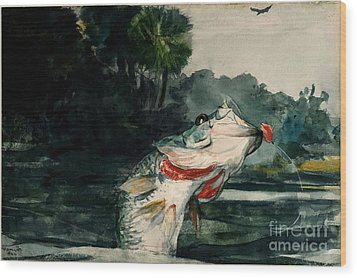 Wood Print featuring the painting Black Bass by Pg Reproductions