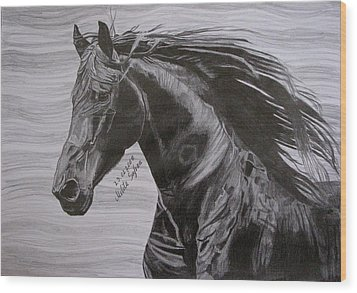 Black Beauty Wood Print by Melita Safran