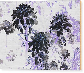 Black Blooms I I Wood Print