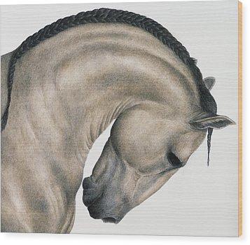 Black Braid Wood Print