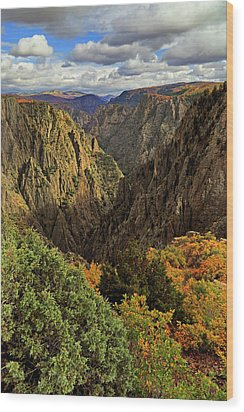 Black Canyon Of The Gunnison - Colorful Colorado - Landscape Wood Print by Jason Politte