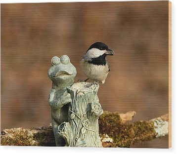 Black-capped Chickadee And Frog Wood Print by Sheila Brown