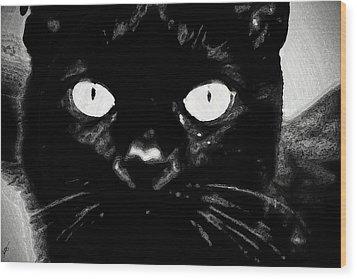 Black Cat Wood Print by Gina O'Brien