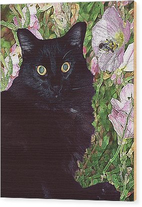 Black Cat Startled By A Bee Wood Print
