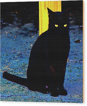 Black Cat Yellow Eyes Wood Print by Gina O'Brien